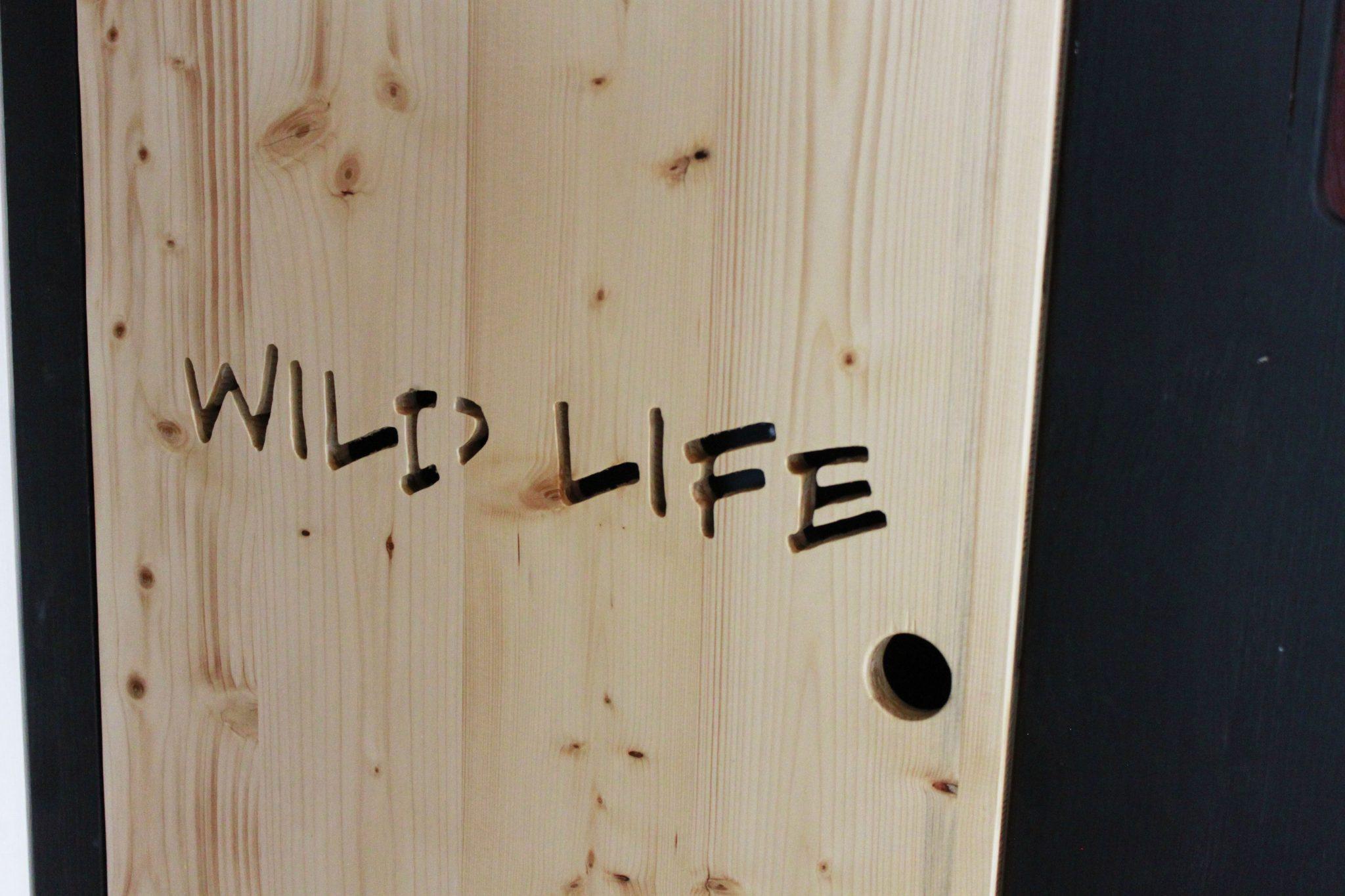 WildLife (8)